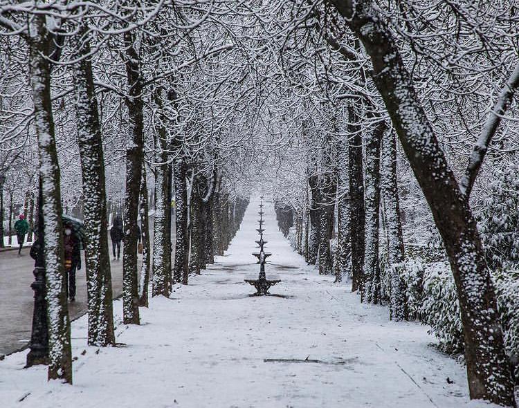Filomena pone en alerta roja a Madrid por nevadas